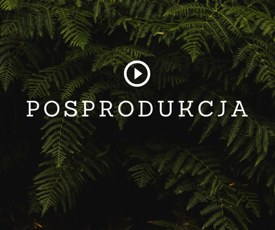 postprodukcja wideo